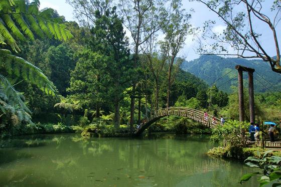 杉林溪森林生态渡假园区-杉林森呼吸,冬日漫步花海双人住宿专案