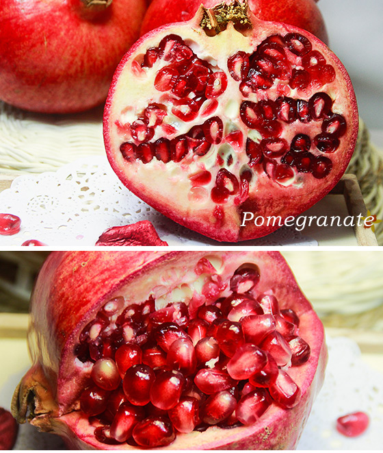 苹果横切结构图名称