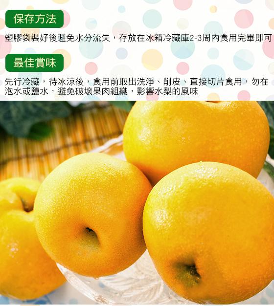 梨/水梨/水果/新興牛奶水梨