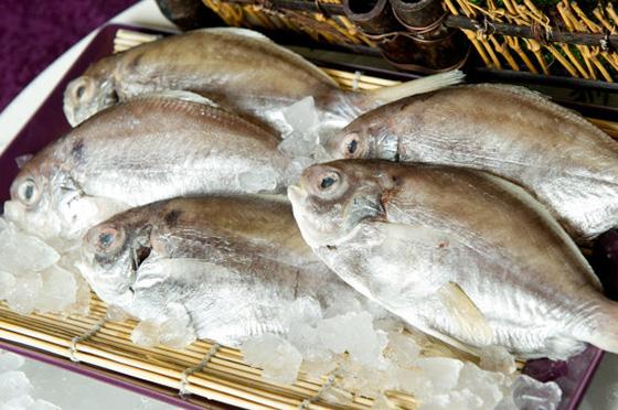 肉魚-生.jpg