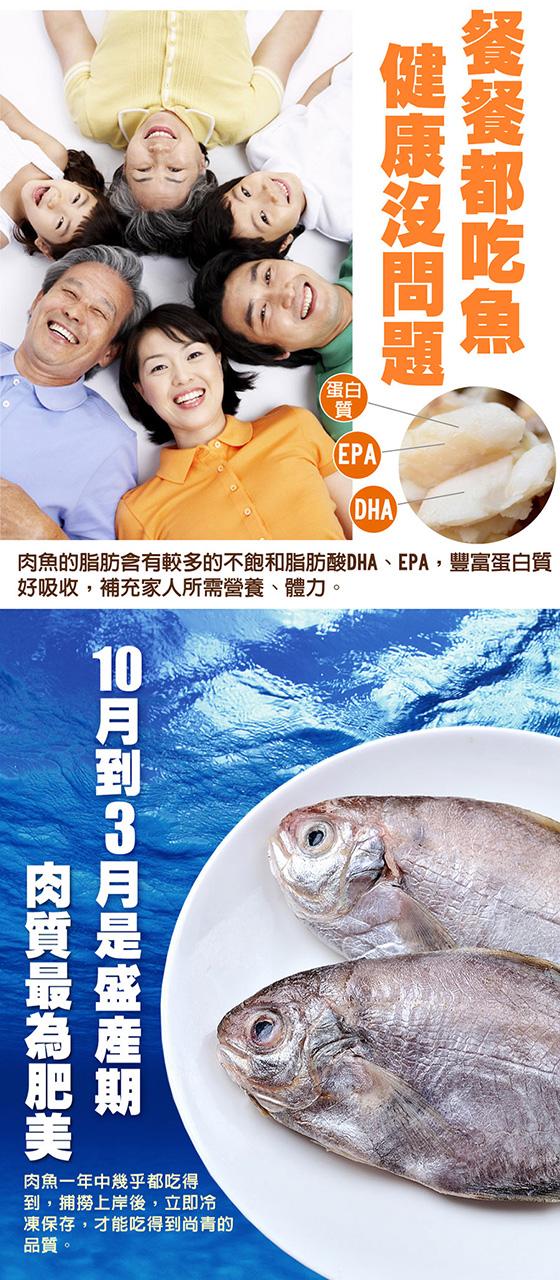 肉魚-01-2.jpg