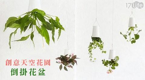 平均每入最低只要185元起(含運)即可享有創意天空花園倒掛花盆1入/2入,顏色隨機出貨:白/黑/藍/粉。