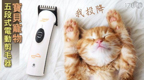 【HACHAN】/寶貝/寵物/五段式/電動/剪毛器/ HL-6609