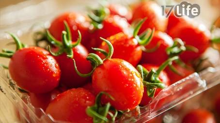 ●产品名称:金蜜番茄一组  ● 产品内容:红番茄1斤/盒