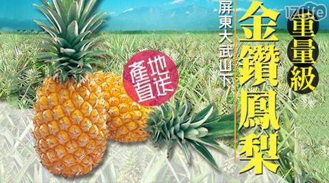 台農17號-屏東嚴選金鑽蜜鳳梨