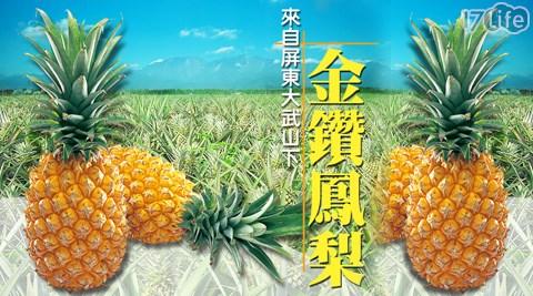 預購/屏東/特選/金鑽/鳳梨/水果/營養