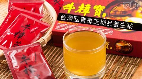 牛樟寶-台灣國寶樟芝極品養生茶