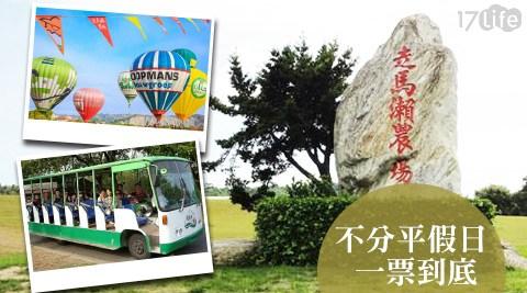 走馬瀨農場/走馬瀨/暑假/親子/牛肉/牛肉湯/農場/蝦仁飯/咖啡