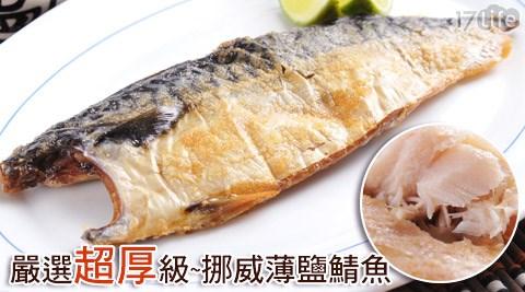 嚴選超厚級挪威薄鹽鯖魚