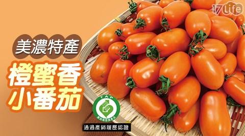 平均每斤最低只要110元起(含運)即可享有【美濃特產】產銷履歷認證橙蜜香小蕃茄3斤/6斤/9斤/12斤/18斤(3斤/箱)。