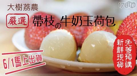 水果/沙拉/輕食/果汁/家購網/嚴選/高雄/大樹/牛奶/玉荷包/禮盒/送禮/產地/夏/野餐/低價
