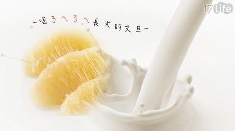 麻豆/文旦