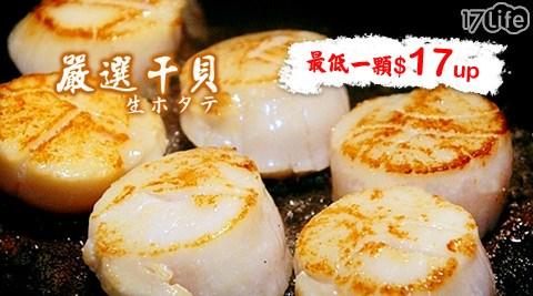 日丸水產-超鮮大干貝