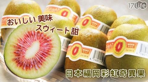 日本/空運/福岡/紅心/彩虹/奇異果/紅肉/季節性/水果/秋天/季節限定