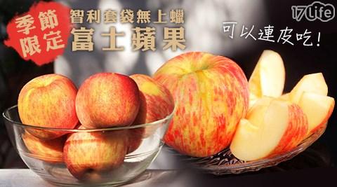 季節限定智利套袋無上蠟富士蘋果(秋香)