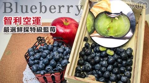 平均最低只要94元起(含運)即可享有智利空運嚴選鮮採特級藍莓:3盒/5盒/8盒/10盒/15盒(125g±10%/盒)。