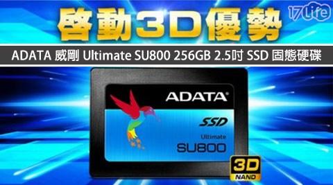 只要2,899元(含運)即可享有【ADATA威剛】原價3,099元Ultimate SU800 256GB 2.5吋SSD固態硬碟1入,享保固3年。