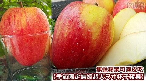 季節限定無蠟超大尺寸杯子蘋果