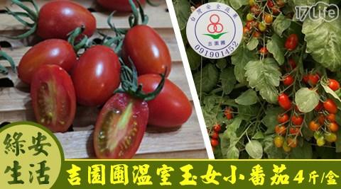 綠安生活-吉園圃溫室玉女小番茄