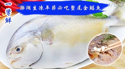 2017/大雞/大吉/年菜/團圓飯/家常菜/食材/生鮮/海鮮/澎湖/年節/過年/團圓/年菜飯/魚/主菜/新鮮