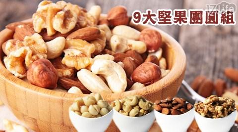 9大堅果團圓組/夏威夷豆/腰果/杏仁果/核桃/松子/南瓜子/堅果