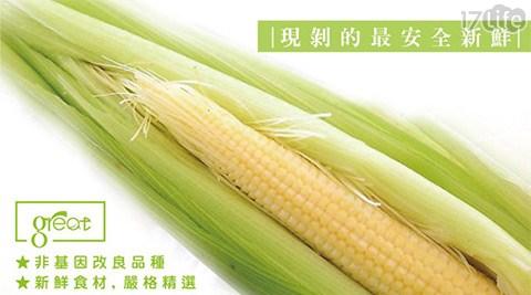 鮮綠農產-嚴選爽脆17life一起生活省錢團購帶葉水果玉米筍