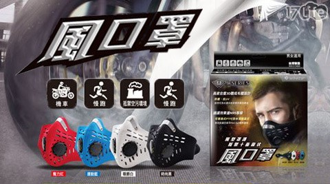 衛風-風系列口罩