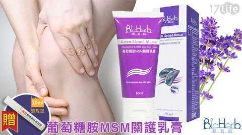 BioHer17life 購物 金b-葡萄糖胺MSM關護乳膏