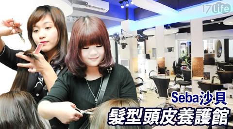 Seba沙貝髮型頭皮養護館-變髮專案