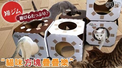 貓咪方塊疊疊樂