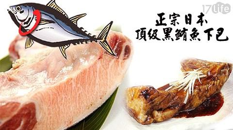 正宗日本頂級黑鮪魚下巴