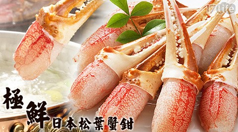 平均每隻最低只要10元起即可帶回極鮮日本松葉蟹鉗:1隻/40隻/80隻/160隻(20隻/包;10~15g/隻;包冰率10%),購滿20隻可享免運優惠!