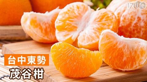 台中/東勢/谷柑/水果/禮盒/伴手禮/贈禮/年節