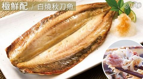 極鮮配/白燒秋刀魚/秋刀魚/魚