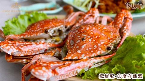 平均最低只要69元起(含運)即可享有【極鮮配】印度洋藍蟹平均最低只要69元起(含運)即可享有【極鮮配】印度洋藍蟹:4隻/8隻/15隻/30隻/45隻/70隻,1份2隻(每份重量約250G+-10%)。