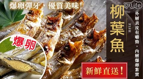 極鮮配/爆卵柳葉魚/柳葉魚/喜相逢