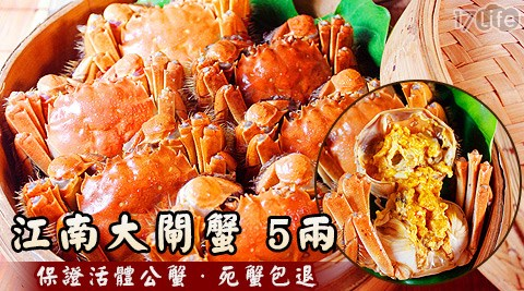 江南/大閘蟹/正宗/活蟹/活體/公蟹/蟹黃/蟹膏/秋蟹/必吃