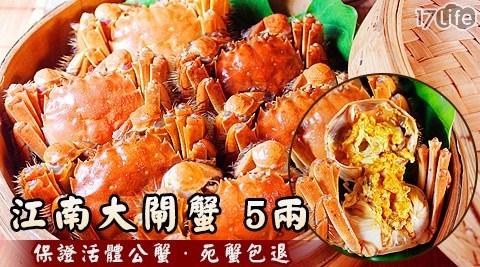 生鮮/海鮮/生猛/秋蟹/江南/大閘蟹/公蟹/進口/清蒸/蟹膏/必吃/蟹黃