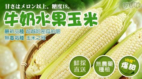 賀鮮生-牛奶水果玉米