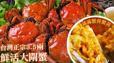 平均每隻最低只要88元起(含運)即可購得台灣正宗鮮活大閘蟹6隻/12隻/18隻/40隻/60隻/100隻(3.5兩±10%/隻)。