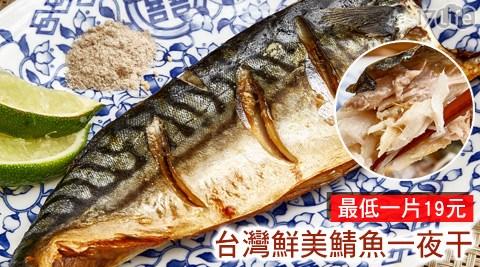 平均每片最低只要19元起即可購得【漁季】台灣鮮美鯖魚一夜干1片/12片/24片/36片/60片(120~140/片),購滿10片免運。