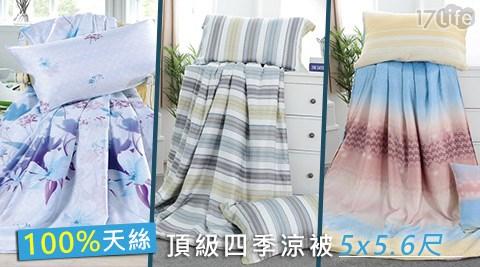 頂級100%天絲四季涼被5x5.6尺+贈天絲枕套