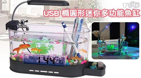 USB橢圓17life 信用卡形迷你多功能魚缸