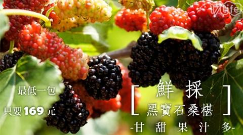 鮮凍/多汁/黑寶石/桑椹/水果/季節/女性/補血/氣色/果汁