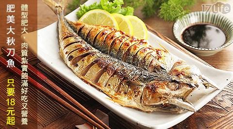 肥美大秋刀魚