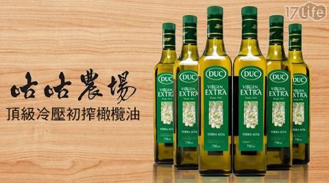 西班牙-杜可-頂級冷壓初搾橄欖油