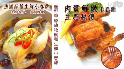 主廚特選/法國品種/鹿野草原/放牧/野生/小春雞/法式/烤雞/肉質軟嫩