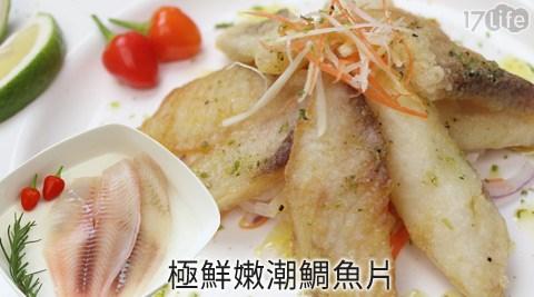 極鮮嫩潮鯛魚片