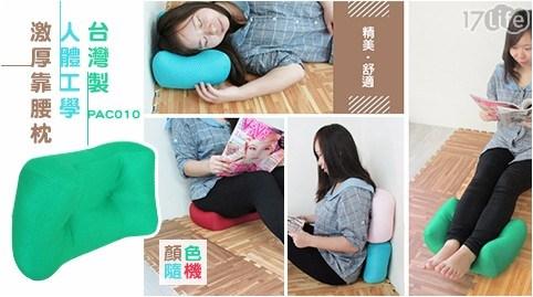 台灣製人體工學激厚靠腰枕(PAC010)