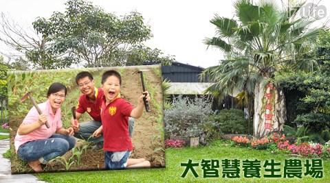 大智慧養生農場/大智慧/養生農場/嘉義/火車/親子/暑假/農場